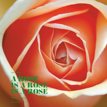 A ROSE IS A ROSE IS A ROSE @ Rose Barni