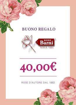 buono regalo 40 euro | cod.41003 | Rose Barni