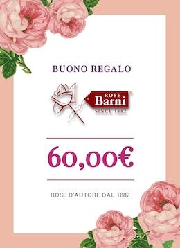 buono regalo 60 euro | cod.41005 | Rose Barni